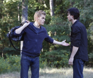 The Vampire Diaries Review: Damon Loves Elena!!!