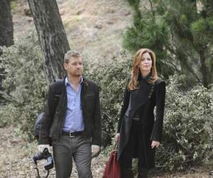 Body of Proof Midseason Report Card: C+