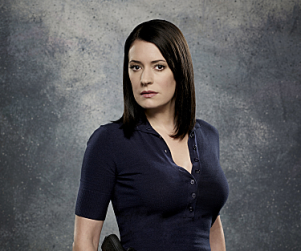 Paget Brewster Cast on New ABC Sitcom