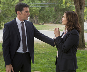 Jeanne Tripplehorn Debuts on Criminal Minds: Hit or Miss?