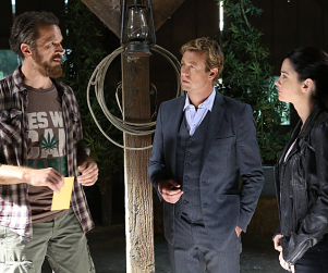The Mentalist Review: High Times