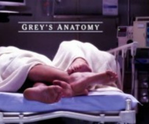 Back on Top: Grey's Anatomy Beats CSI, Regains Top Ratings Ranking