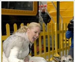 Katherine Heigl Lends Pups a Hand
