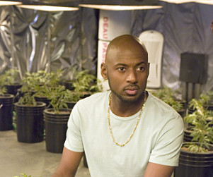 Romany Malco to Portray Lawyer on The Good Wife