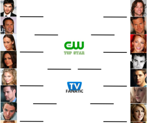 Tournament of TV Fanatic: Leighton Meester vs. Wilson Bethel!