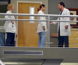 Grey's Anatomy: Watch Season 10 Episode 14 Online