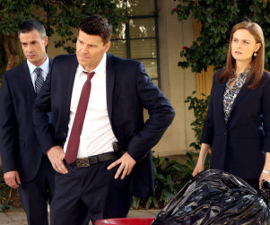 Bones: Watch Season 9 Episode 16 Online