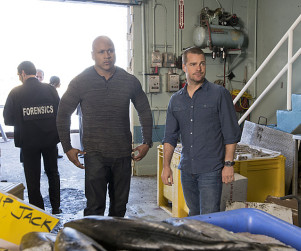 NCIS: Los Angeles Review: Red Herring