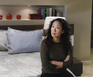 Grey's Anatomy: Watch Season 10 Episode 17 Online
