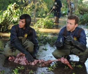 TV Ratings Report: Bones Drops, The Tomorrow People Plummets