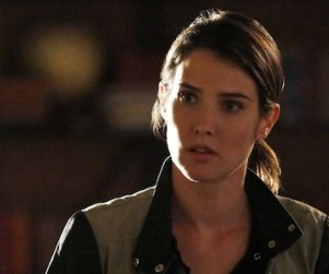 Agents of S.H.I.E.L.D.: Watch Season 1 Episode 20 Online