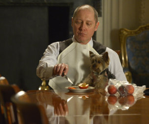 The Blacklist: Watch Season 1 Episode 22 Online