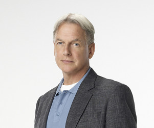 The Cast of NCIS: Before They Were Stars