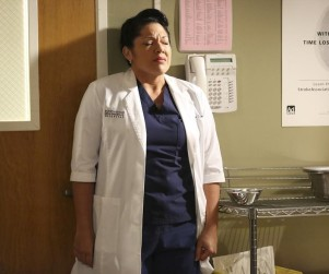 Grey's Anatomy Season 11 Episode 5 Review: Bend & Break