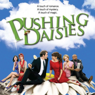 A Poster for Pushing Daisies Season Two