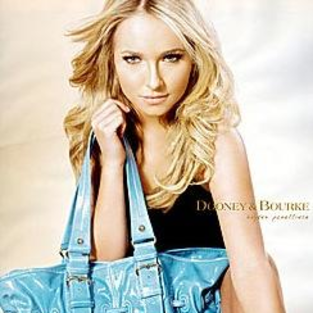 Introducing: The Hayden Panettiere Bag!