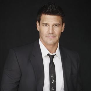 David Boreanaz Confirms: Zooey Deschanel to Guest Star on Bones
