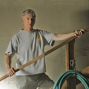Gibbs and Abby to Grow Closer on NCIS