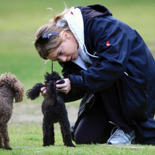 A Dog Day Afternoon For Ellen Pompeo