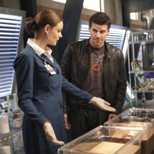 "Bones Preview: ""The Proof in the Pudding"""