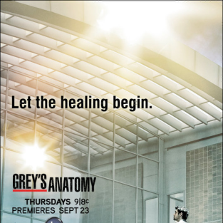 Grey's Anatomy Season 7 Posters: Choose Your Favorite!