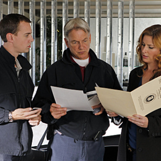 NCIS Review: Good Work, Abbses
