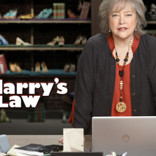 Harry's Law: Casting for Two New Roles