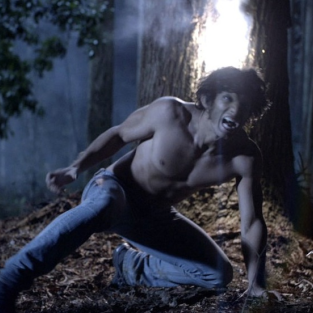 Teen Wolf: Renewed for Season 2!