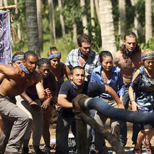 South pacific survivors