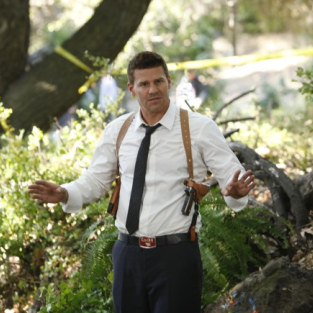 Bones: Renewed For Season 8!