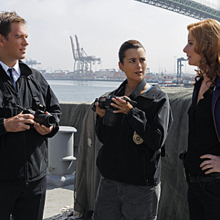 NCIS Review: Searching For the Next Mrs. Gibbs