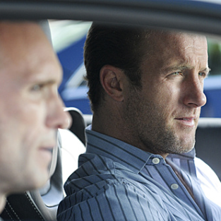 Hawaii Five-0 Review: Tracking the Wild Danno