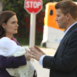 Bones Season 8 Scoop: Will Booth Propose?