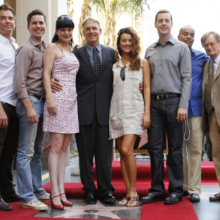 Mark Harmon Earns Star on Hollywood Walk of Fame