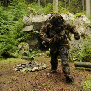 Psych Review: The Bigfoot Project