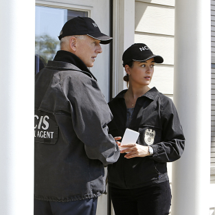Mark Harmon on Cote de Pablo Exit: It's Our Job to Stay #1