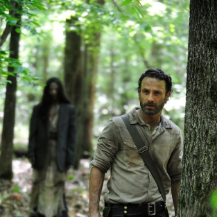The Walking Dead Season 4: First Photo!