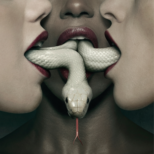 FX Orders Fourth Installment of American Horror Story