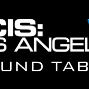 "NCIS: Los Angeles Round Table: ""Past Lives"""