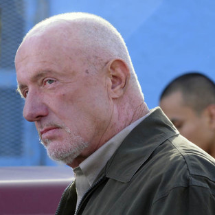 Jonathan Banks to Guest Star on Ringer