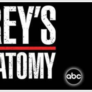 Friday Grey's Anatomy Repeats Back On!