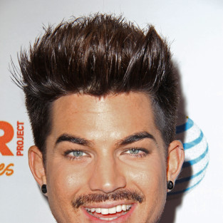 Adam Lambert Cast on Glee Season 5