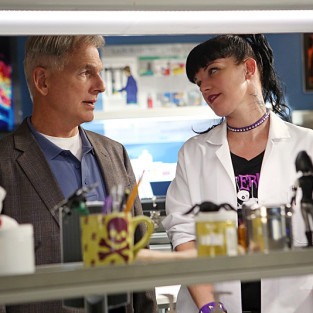 NCIS Promo & Photos: Flying Under the Radar