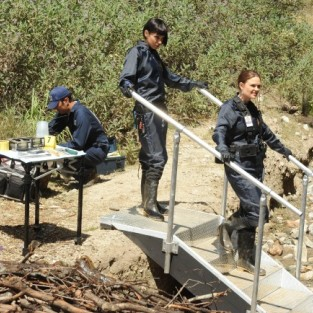 Bones: Watch Season 9 Episode 8 Online