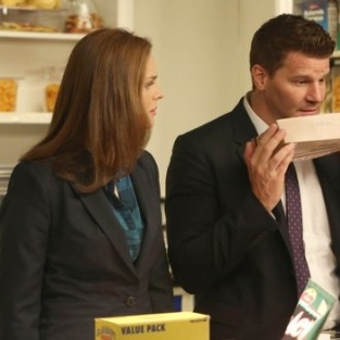 Bones: Watch Season 9 Episode 10 Online