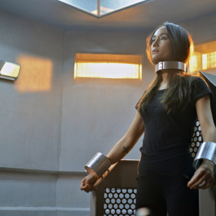 Nikita Series Finale Review: Freedom