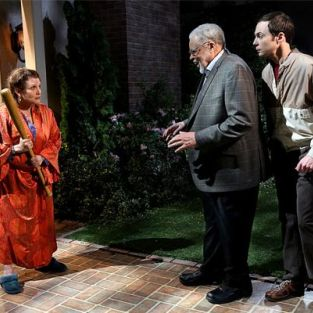 The Big Bang Theory: Watch Season 7 Episode 14 Online