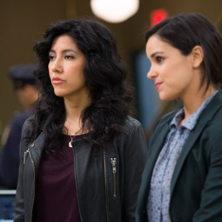 Brooklyn Nine-Nine: Watch Season 1 Episode 17 Online