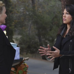 Grey's Anatomy: Watch Season 10 Episode 13 Online