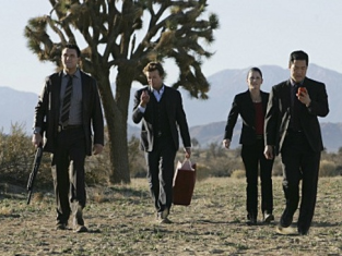 The CBI Team